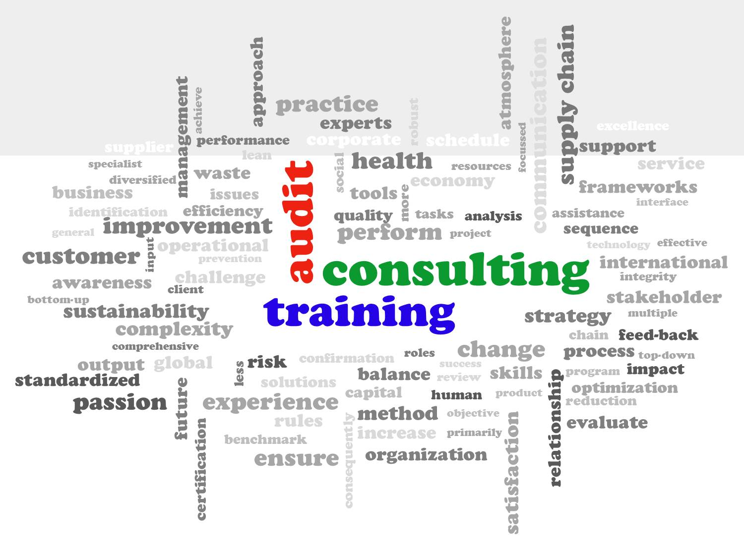 consulting training audit